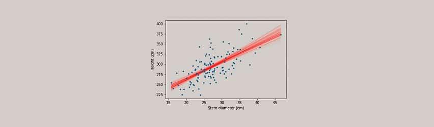statistische-beratung-münster